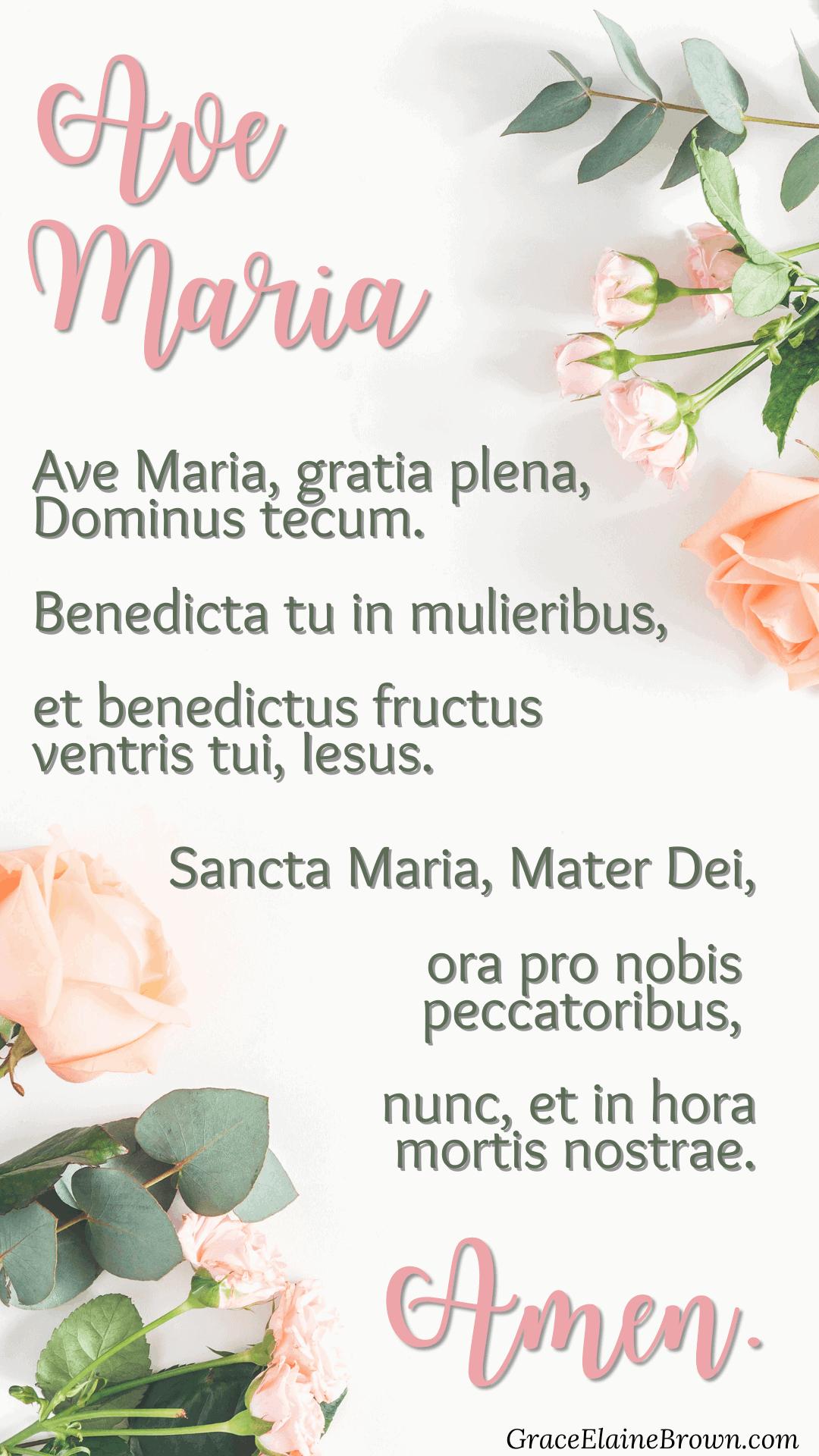 hail mary in latin roses