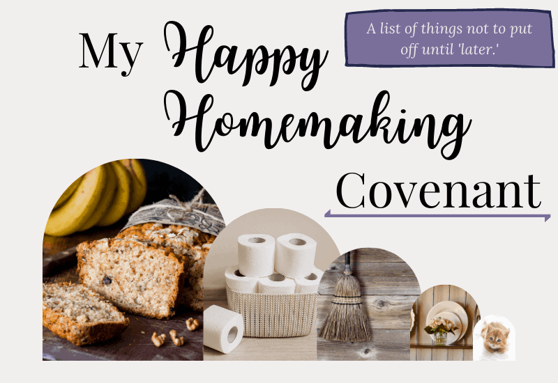 homemaking covenant thumbnail