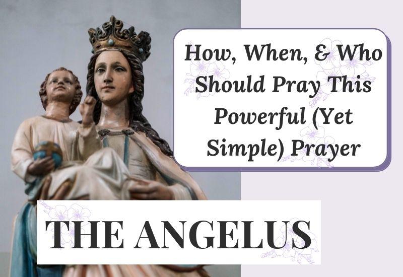 blog angelus pic